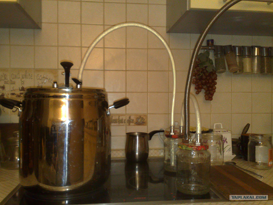 Сварить самогон в домашних условиях 724