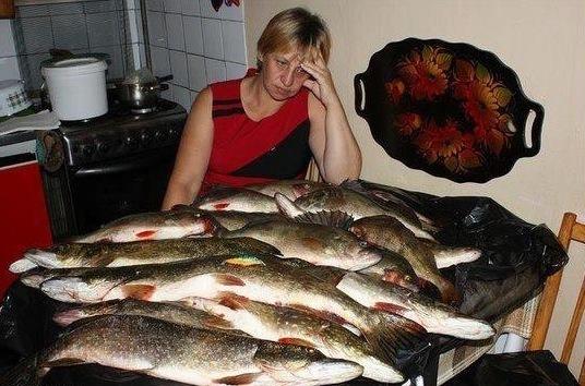 о рыбе и рыбалке с юмором