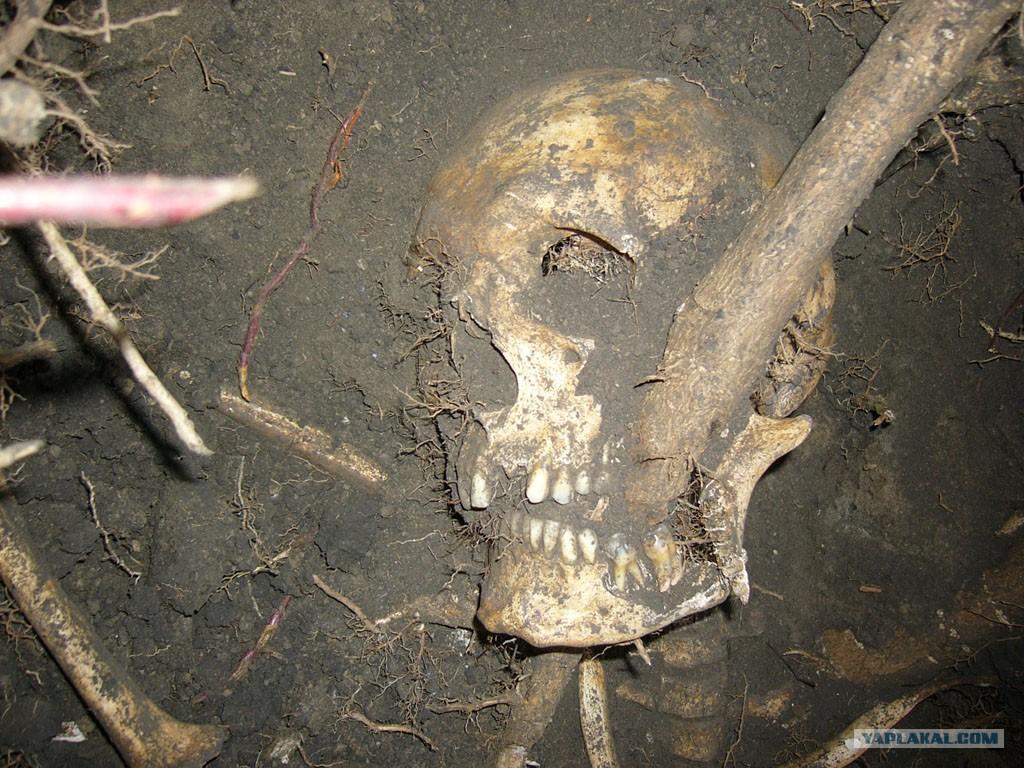 Пододессой нашли останки немецкого пулеметчика сжетоном и.