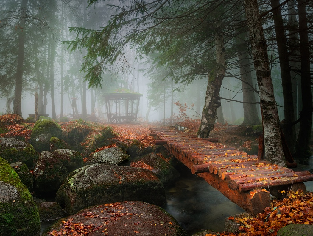 Необыкновенные и просто обыкновенные фото - Страница 26 12302688