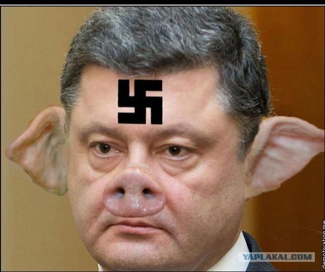 Картинки по запросу порошенко фашист