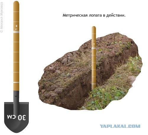 шуточная инструкция к лопате - фото 10