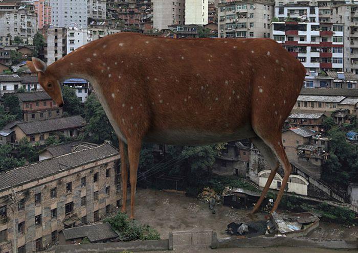 Если бы животные мутировали до гигантских размеров