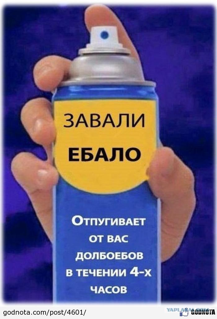 bliznetsi-romantichni-kak-poslednyaya-portovaya-blyad