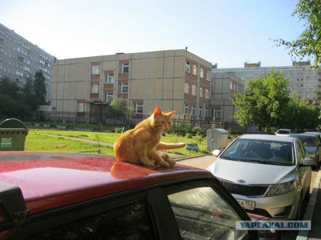 Отпуск в Нижнем Новгороде.
