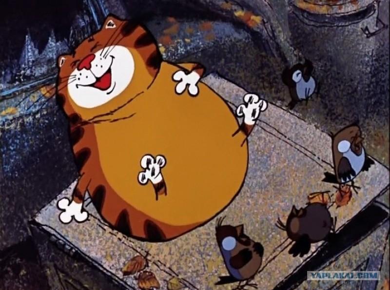 """Шкиряк обещает вести беспощадную борьбу с """"жирными котами"""" в ГосЧС - Цензор.НЕТ 5085"""