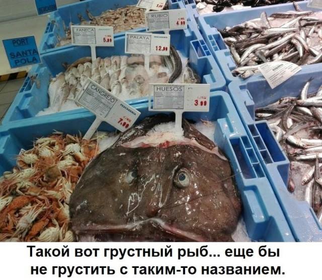 http://s00.yaplakal.com/pics/pics_original/9/2/4/12763429.jpg