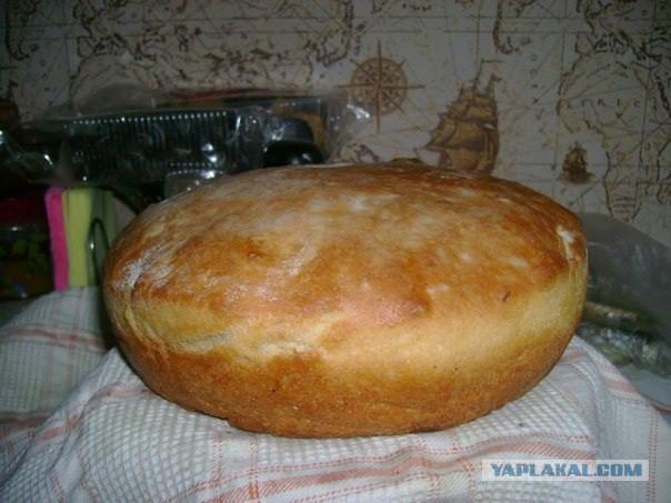 Хлеб на солоде в домашних условиях