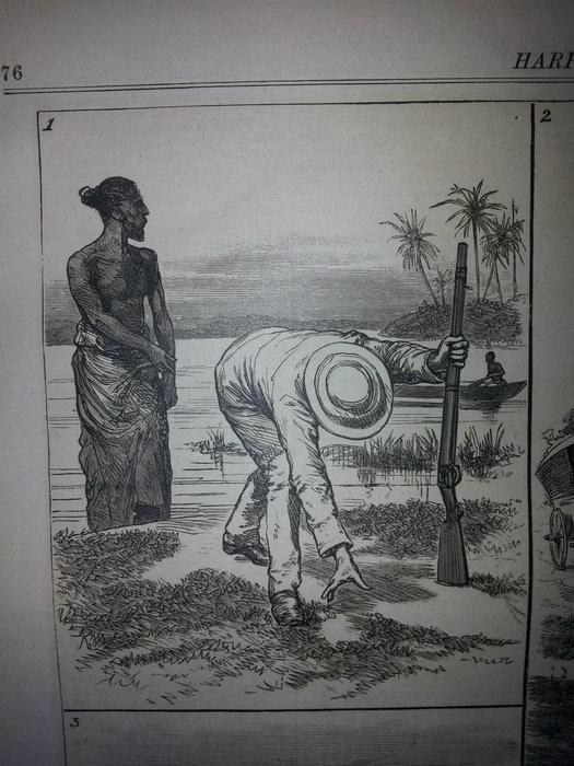 Как охотились на крокодилов в 19 веке