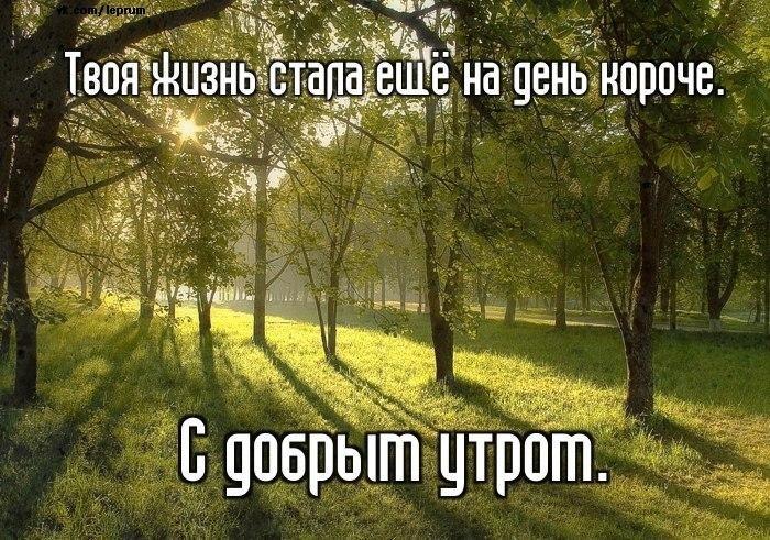 http://s00.yaplakal.com/pics/pics_original/9/4/0/1851049.jpg