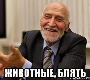 Бои с участием детей не нарушали их прав, они просто показали шоу, - детский омбудсмен в Чечне - Цензор.НЕТ 9608