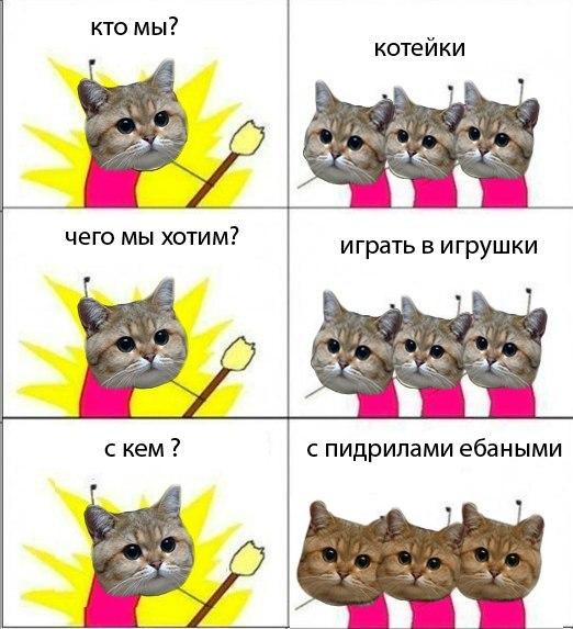 Подозреваемая в издевательствах над животными из Хабаровска задержана в Новосибирске