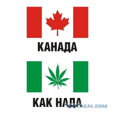 канада страна хоккеистов и проституток