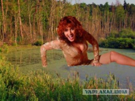 тина болотная фото