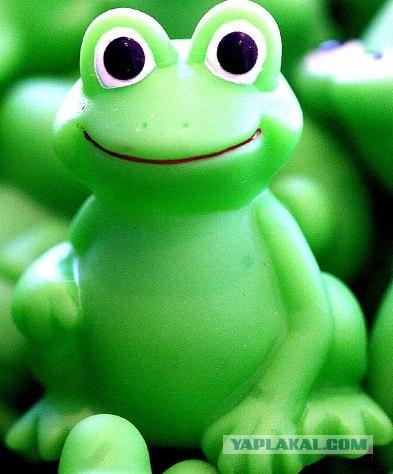 Заставки на телефон лягушки