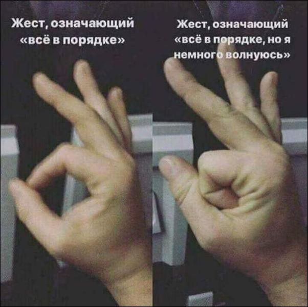 http://s00.yaplakal.com/pics/pics_original/9/4/8/11447849.jpg