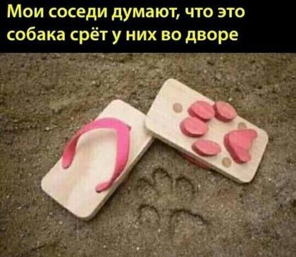 http://s00.yaplakal.com/pics/pics_original/9/4/8/13753849.jpg