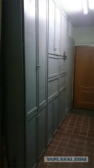 Хочу бюджетный шкаф в межквартирный коридор. Москва. Новокосино.