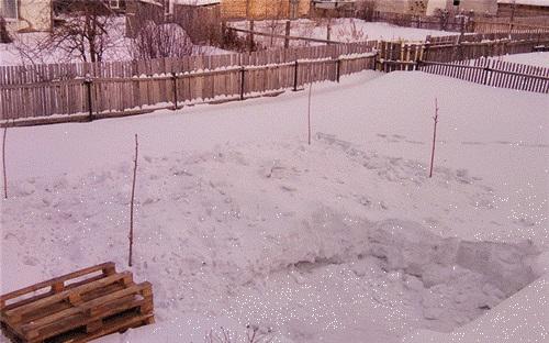 Что можно слепить из снега