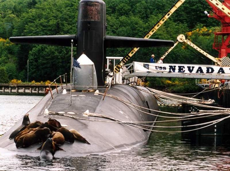 ближайшую неделю все о подводных лодках бестселлер