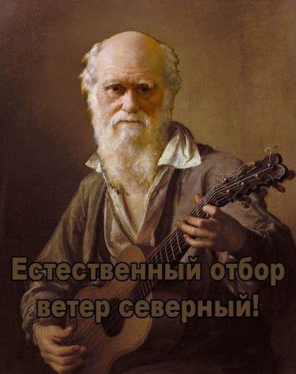 """В Донецкой области мужчина подорвался, пытаясь """"болгаркой"""" распилить снаряд - Цензор.НЕТ 6723"""