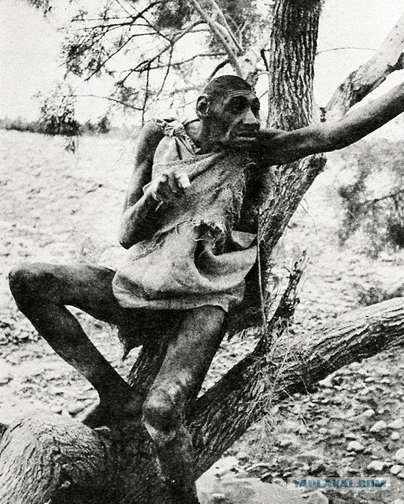 Загадка Аззо Бассоу, прозванного последним неандертальцем планеты