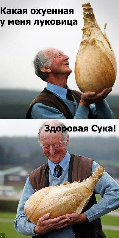 prostitutki-anketi-s-foto-moskva