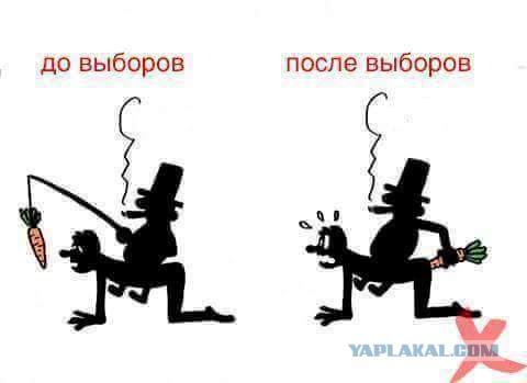http://s00.yaplakal.com/pics/pics_original/9/6/3/8313369.jpg