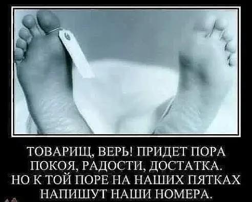 http://s00.yaplakal.com/pics/pics_original/9/6/5/12908569.jpg
