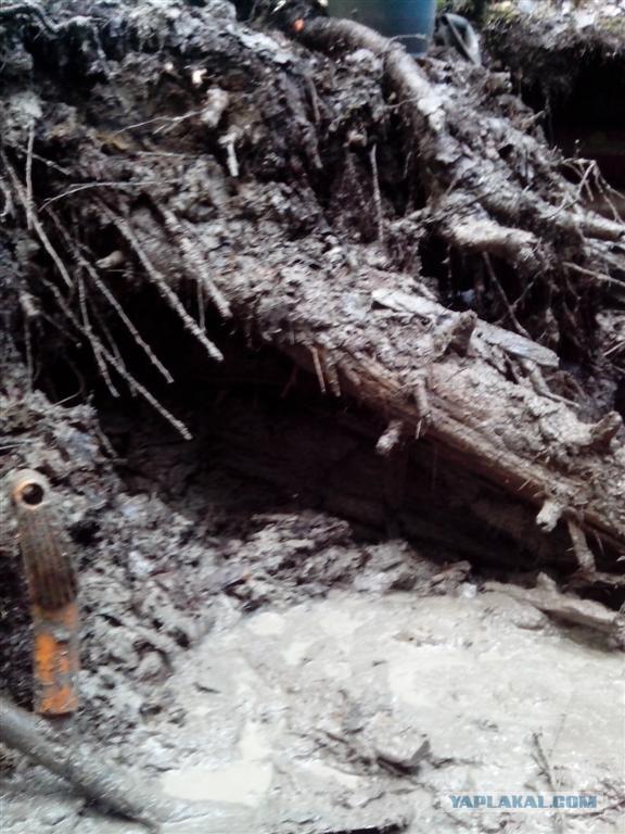Раскопки: тайна чёрного Маннергейма