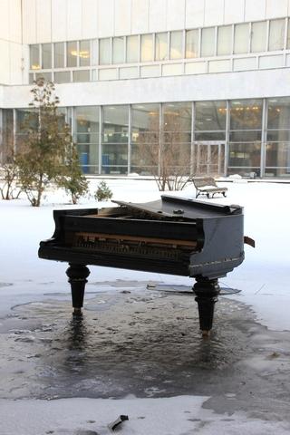 Рабочие по ошибке выкинули рояль за полмиллиона