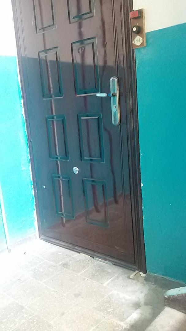 Правильная установка двери: чтобы собака видела, лаять ей или свои пришли