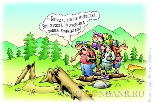 Поздравления к дню леса шуточные