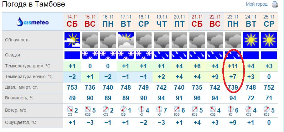 яндекс погода тамбов на неделю Борохов