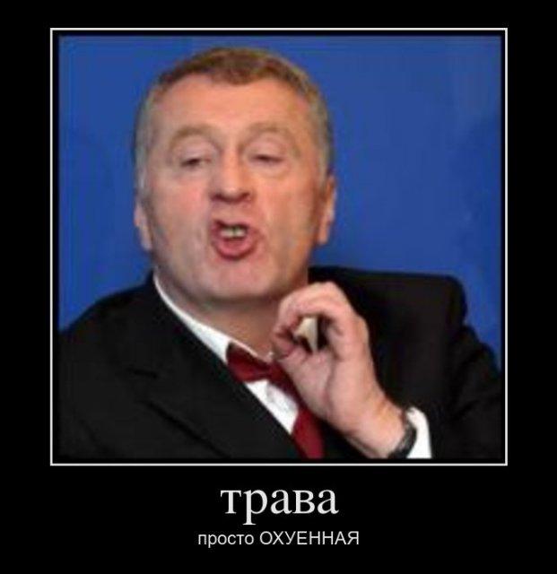 Жириновский предложил вывести из США наш золотой запас вслед за турецким