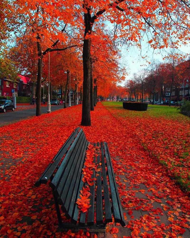 Просто красивые фото - Страница 2 10613289
