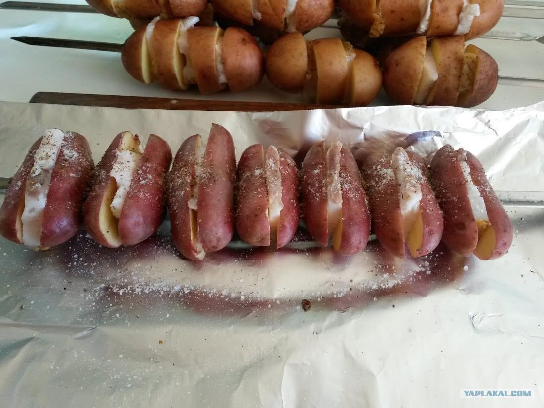 Поздравления с днем рождения картошка фото 689