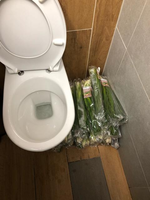 Неожиданно в туалете