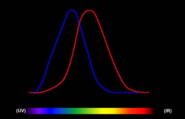 Тест-обзор светодиодных ламп для линзованой оптики. Часть 1