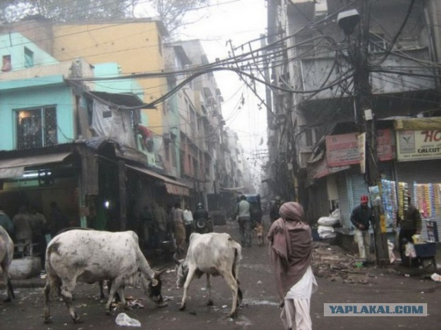Обратная сторона индийских мегаполисов.