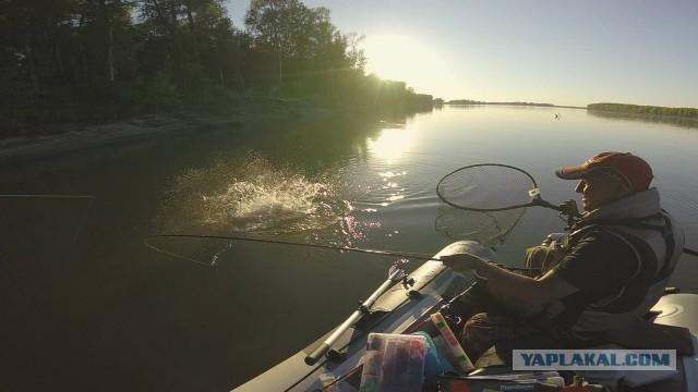 Рыбалка на алтайских щук чуть не оставила без рук!