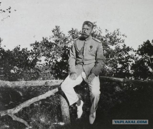 Первую пулю в царя всадил товарищ Медведев