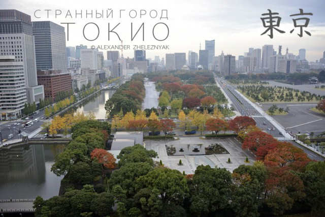 Странный город Токио.