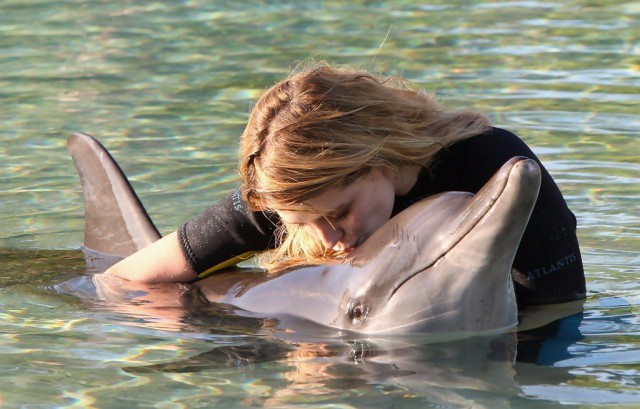 Индия признала дельфинов личностями и запретила дельфинарии