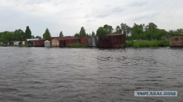 Прогулка на катерах Петербург-Москва.