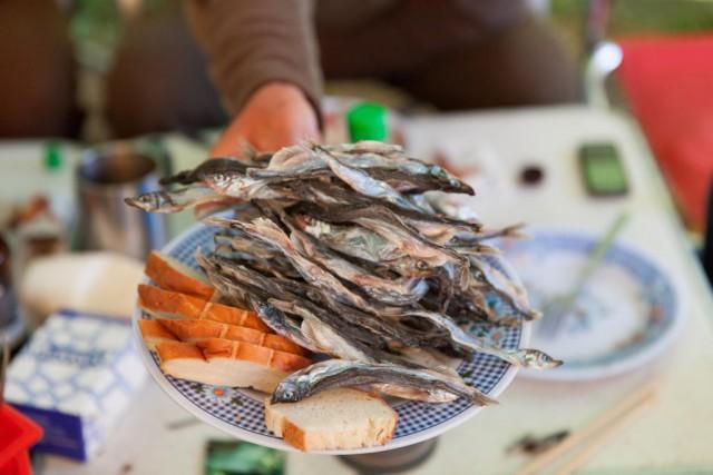 Камчатка: рыбалка на чавычу