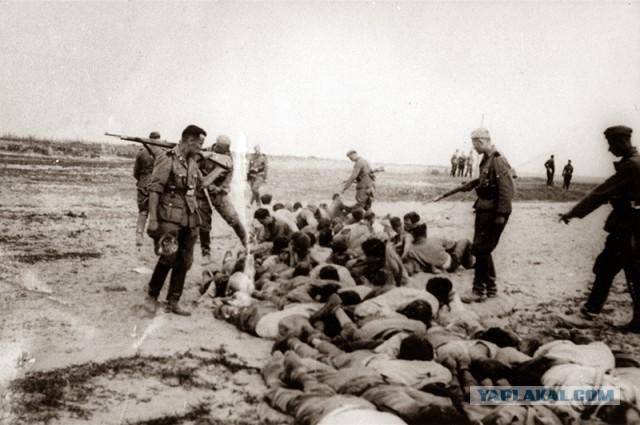 фото пленных голых женщин