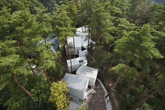 Как построить дом посреди леса