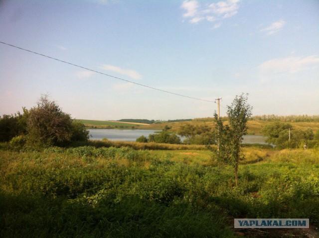 Нужен помощник по хозяйству, Воронежская область