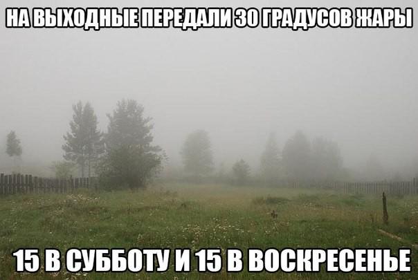 5828530.jpg